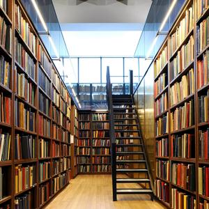 Библиотеки Смидовича