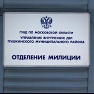Отделения полиции Смидовича