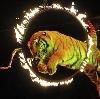 Цирки в Смидовиче